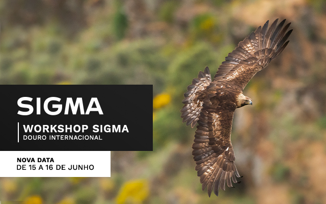 Workshop SIGMA - Parque Natural Douro Internacional